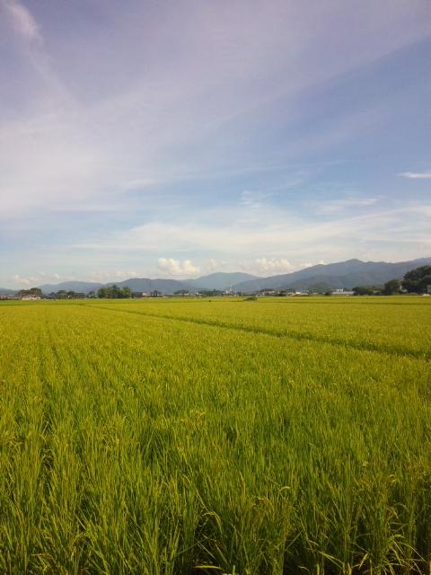 滋賀の風景1
