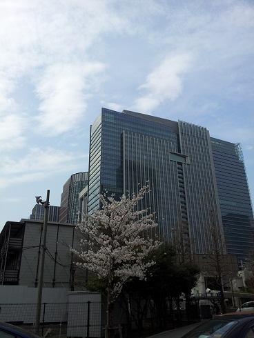 再び東京へ(桜)
